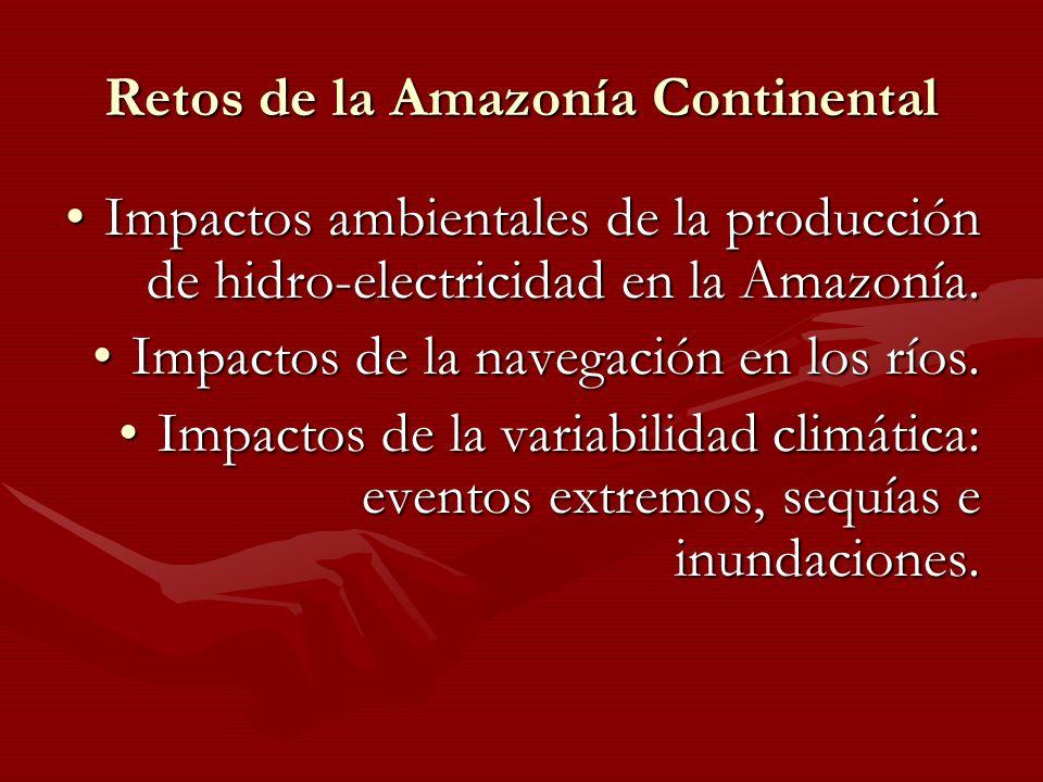 Retos de la Amazonía Continental