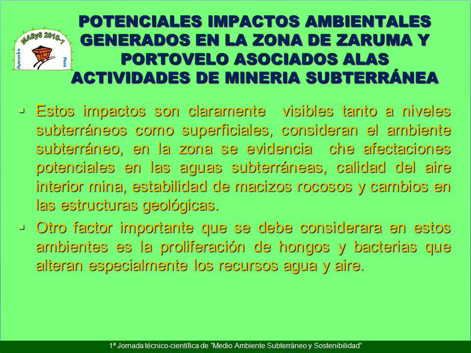 POTENCIALES IMPACTOS AMBIENTALES GENERADOS EN LA ZONA DE ZARUMA Y PORTOVELO ASOCIADOS ALAS ACTIVIDADES DE MINERIA SUBTERRÁNEA
