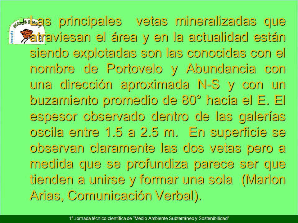 Las principales vetas mineralizadas que atraviesan el área y en la actualidad están siendo explotadas son las conocidas con el nombre de Portovelo y Abundancia con una dirección aproximada N-S y con un buzamiento promedio de 80° hacia el E.