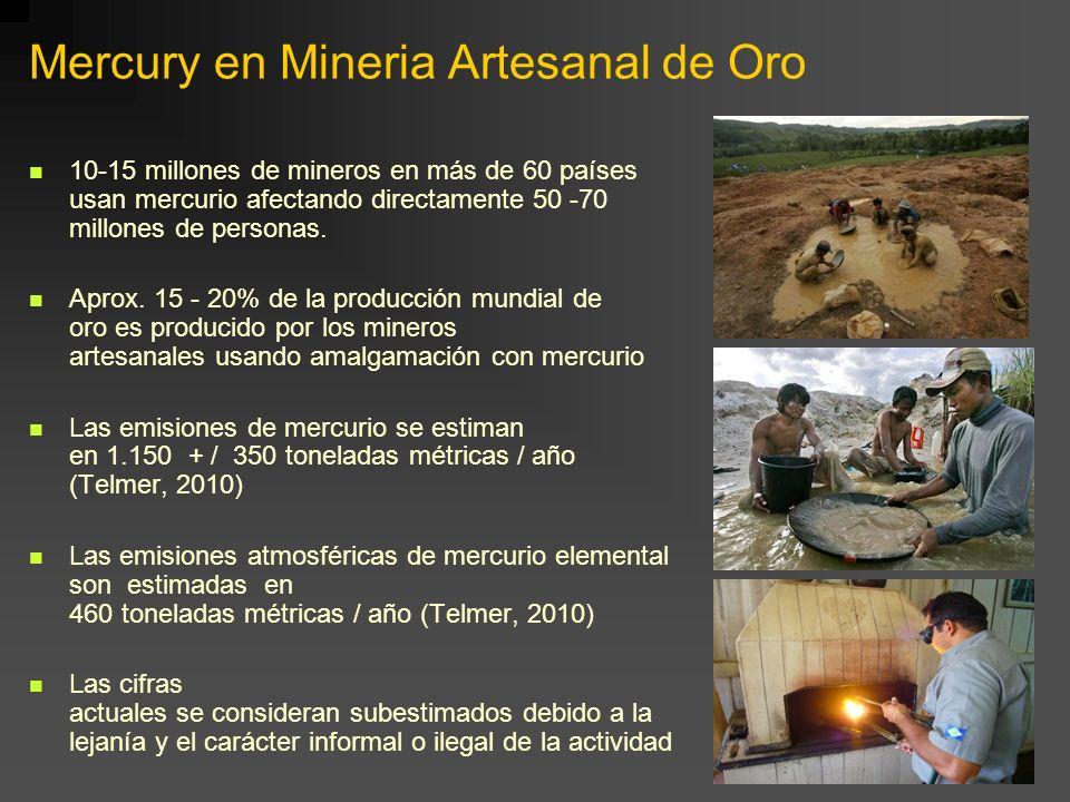 Mercury en Mineria Artesanal de Oro