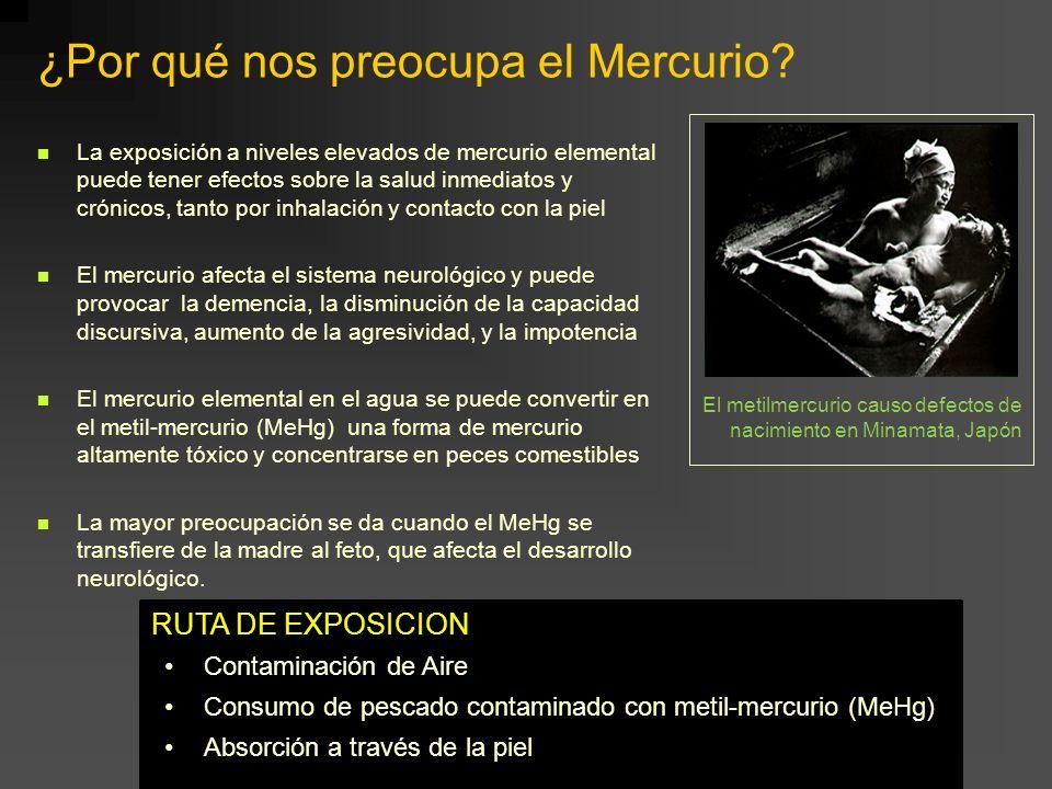 ¿Por qué nos preocupa el Mercurio