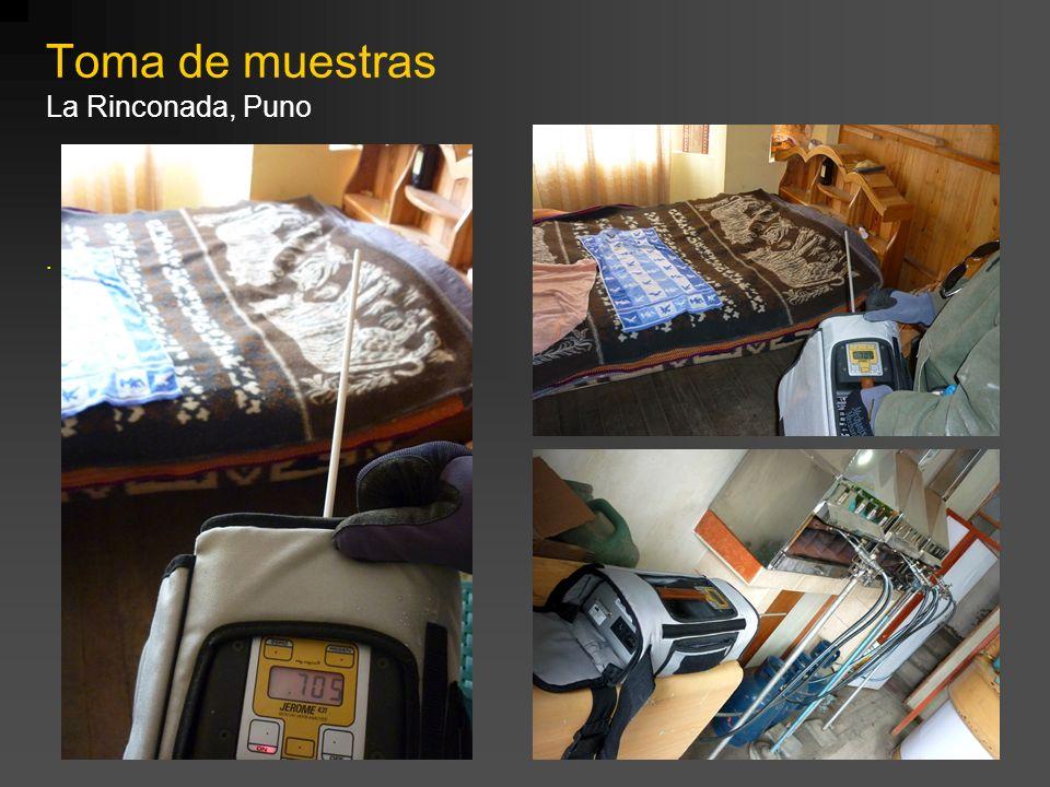 Toma de muestras La Rinconada, Puno