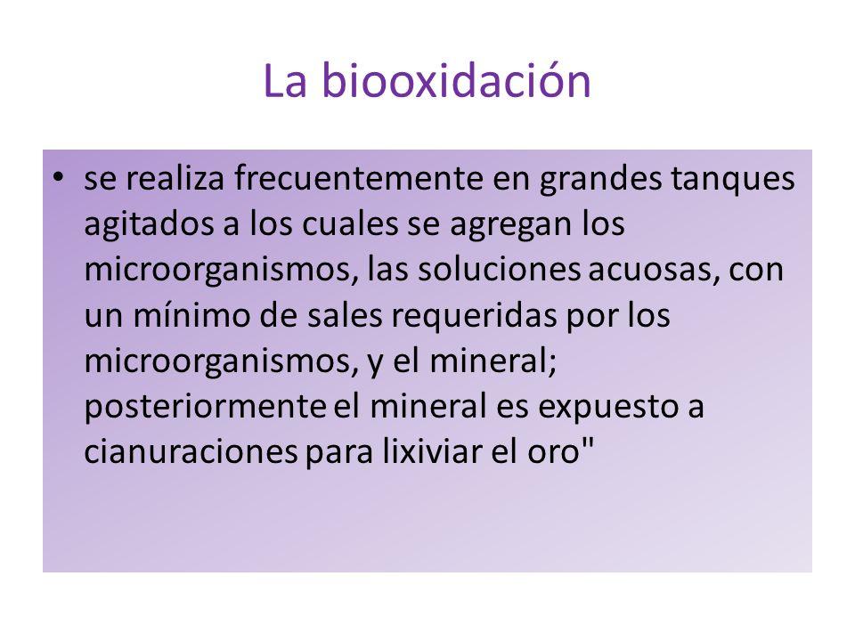 La biooxidación