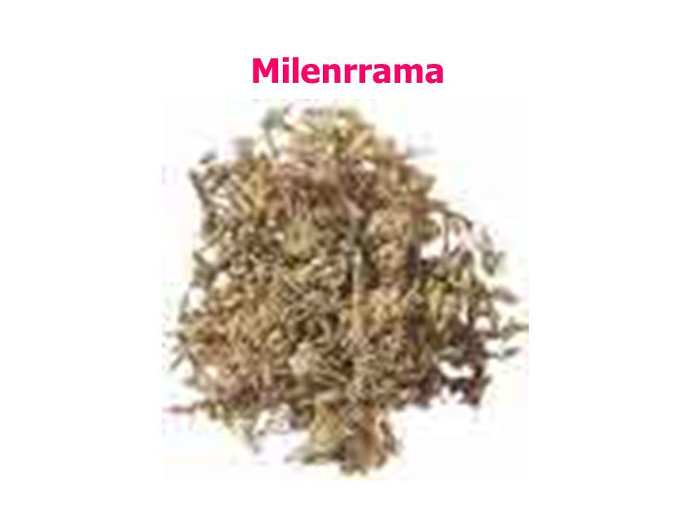 Milenrrama