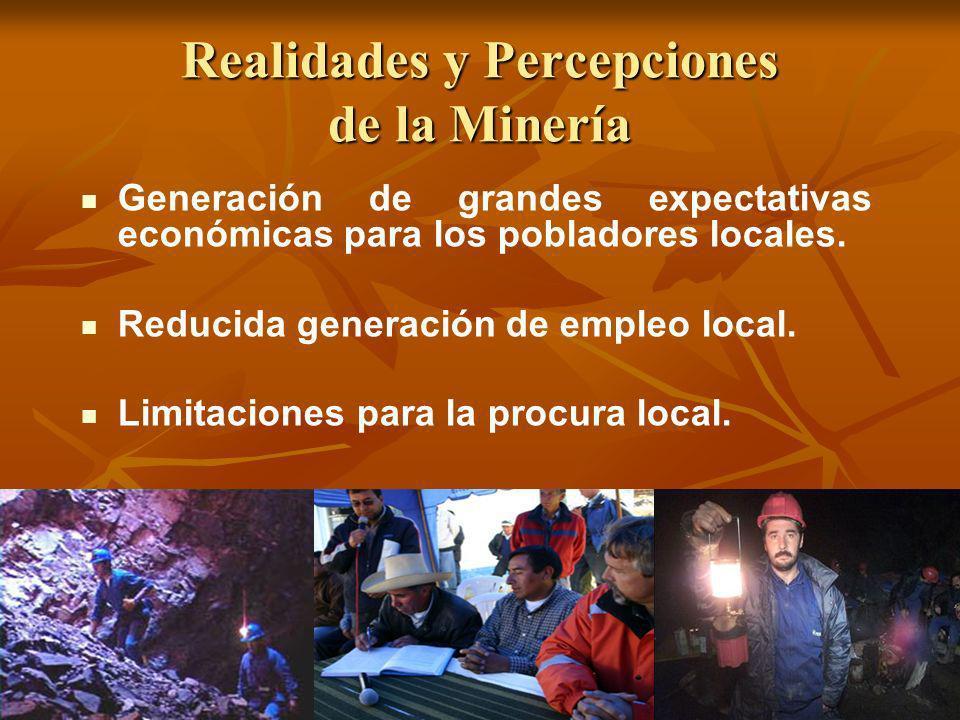 Realidades y Percepciones de la Minería