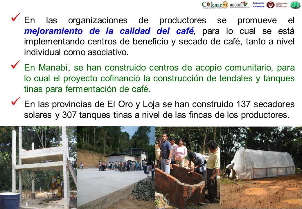 En las organizaciones de productores se promueve el mejoramiento de la calidad del café, para lo cual se está implementando centros de beneficio y secado de café, tanto a nivel individual como asociativo.