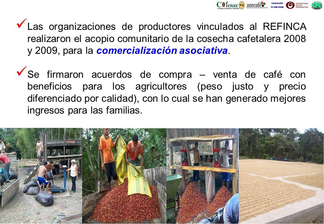 Las organizaciones de productores vinculados al REFINCA realizaron el acopio comunitario de la cosecha cafetalera 2008 y 2009, para la comercialización asociativa.