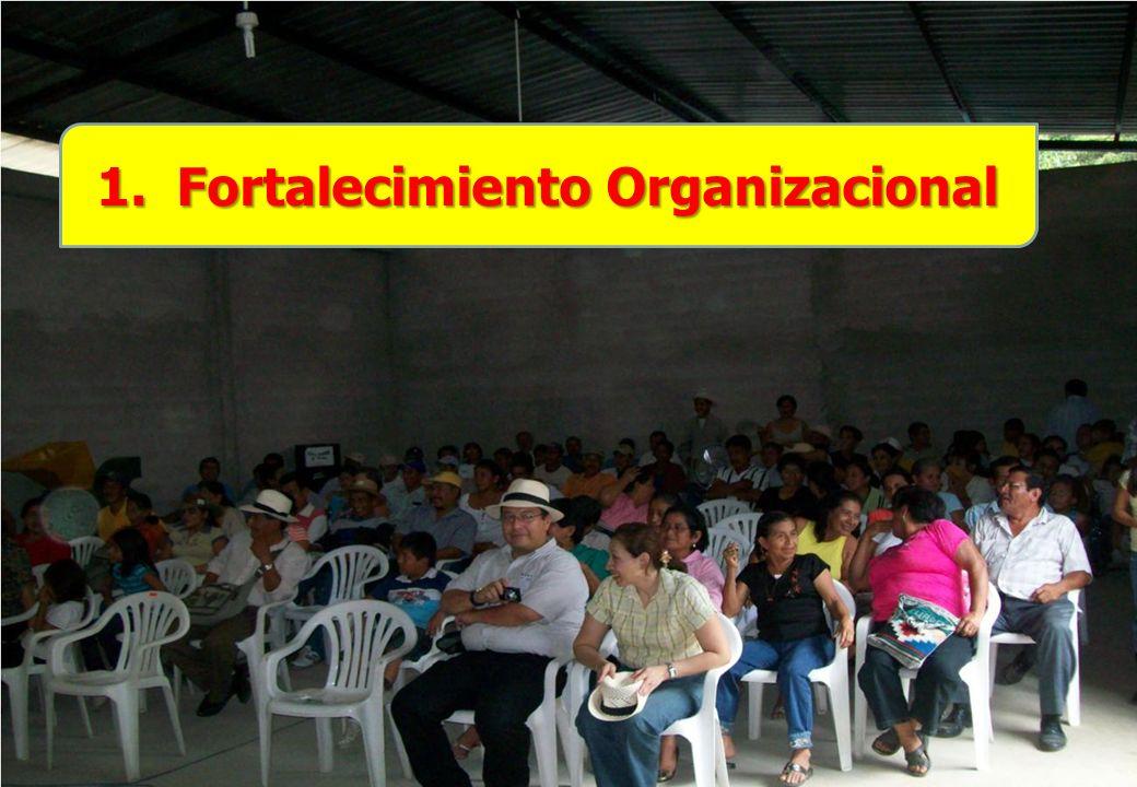 1. Fortalecimiento Organizacional