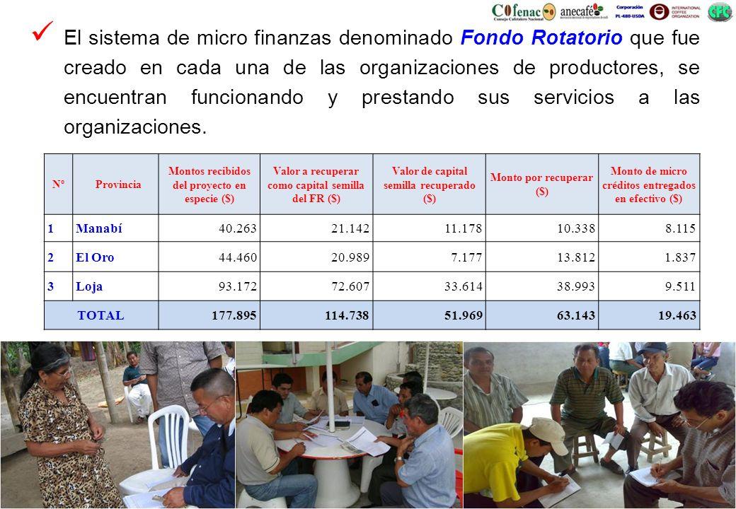 El sistema de micro finanzas denominado Fondo Rotatorio que fue creado en cada una de las organizaciones de productores, se encuentran funcionando y prestando sus servicios a las organizaciones.