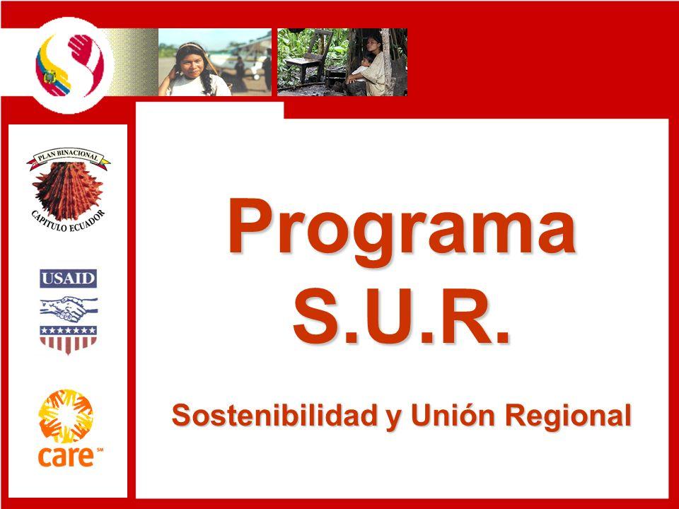 Sostenibilidad y Unión Regional