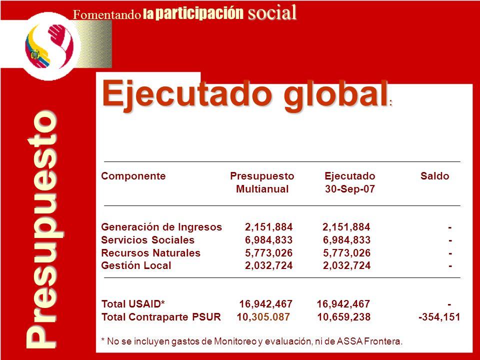 Presupuesto Ejecutado global: Fomentando la participación social