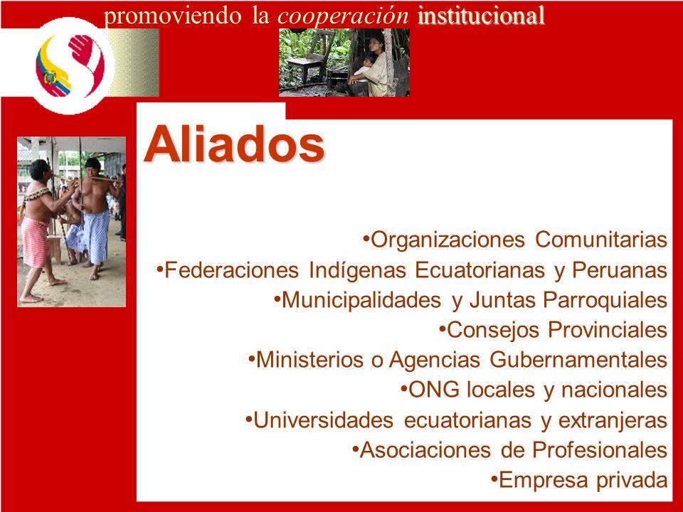 Aliados promoviendo la cooperación institucional
