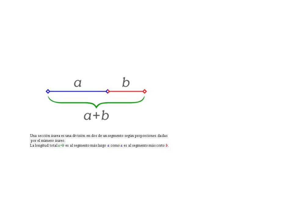 Una sección áurea es una división en dos de un segmento según proporciones dadas