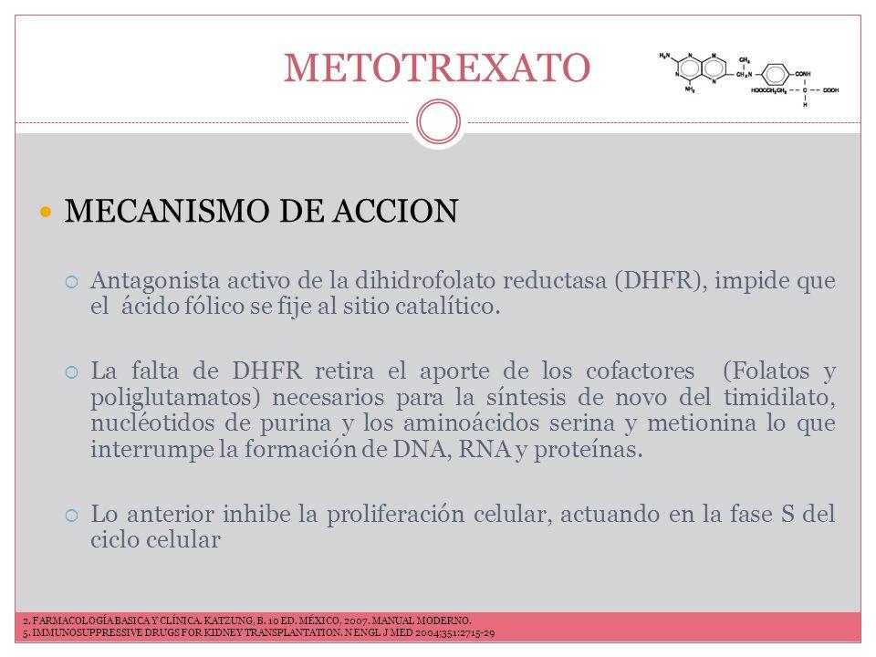 METOTREXATO MECANISMO DE ACCION