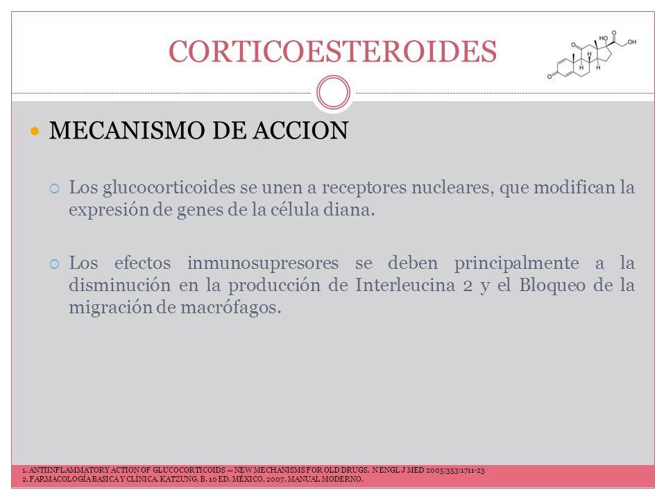 CORTICOESTEROIDES MECANISMO DE ACCION