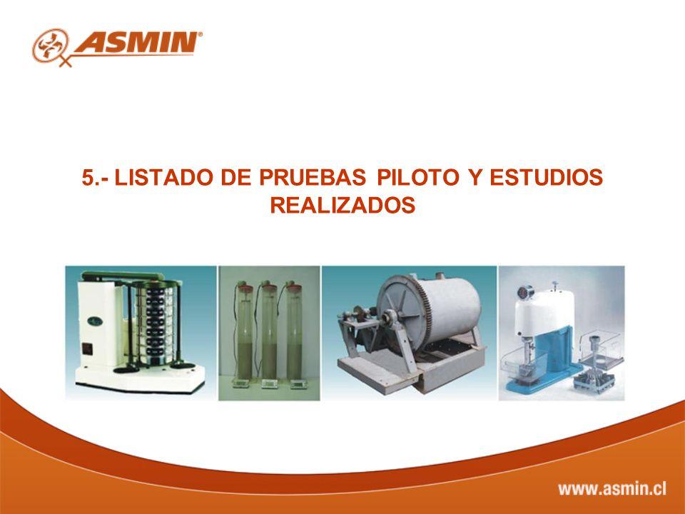 5.- LISTADO DE PRUEBAS PILOTO Y ESTUDIOS REALIZADOS