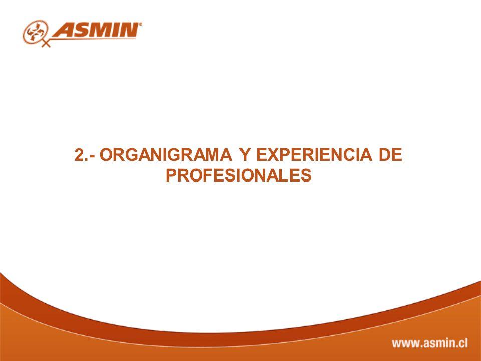 2.- ORGANIGRAMA Y EXPERIENCIA DE PROFESIONALES