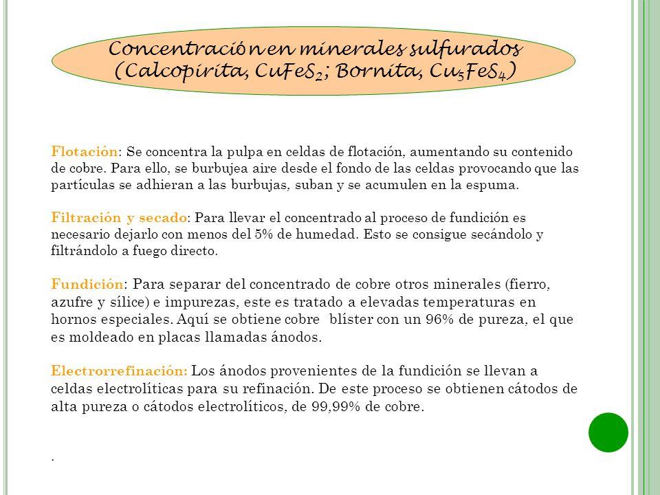 Concentración en minerales sulfurados