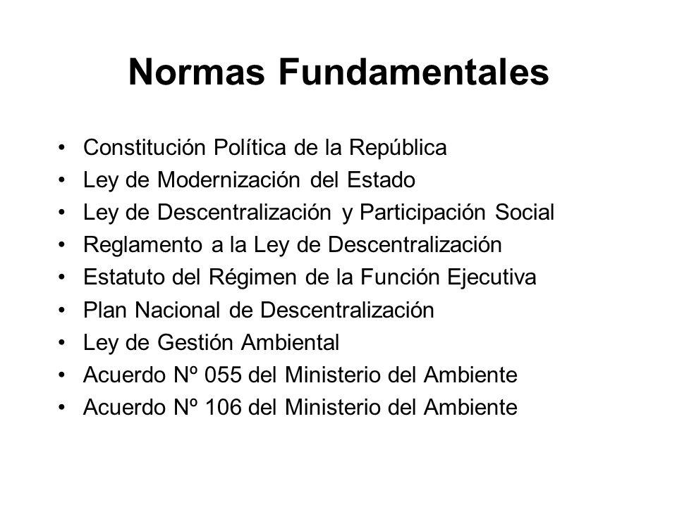 Normas Fundamentales Constitución Política de la República