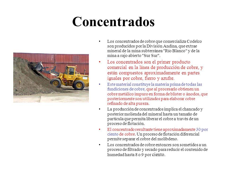 Concentrados