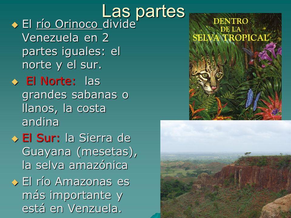Las partes El río Orinoco divide Venezuela en 2 partes iguales: el norte y el sur. El Norte: las grandes sabanas o llanos, la costa andina.