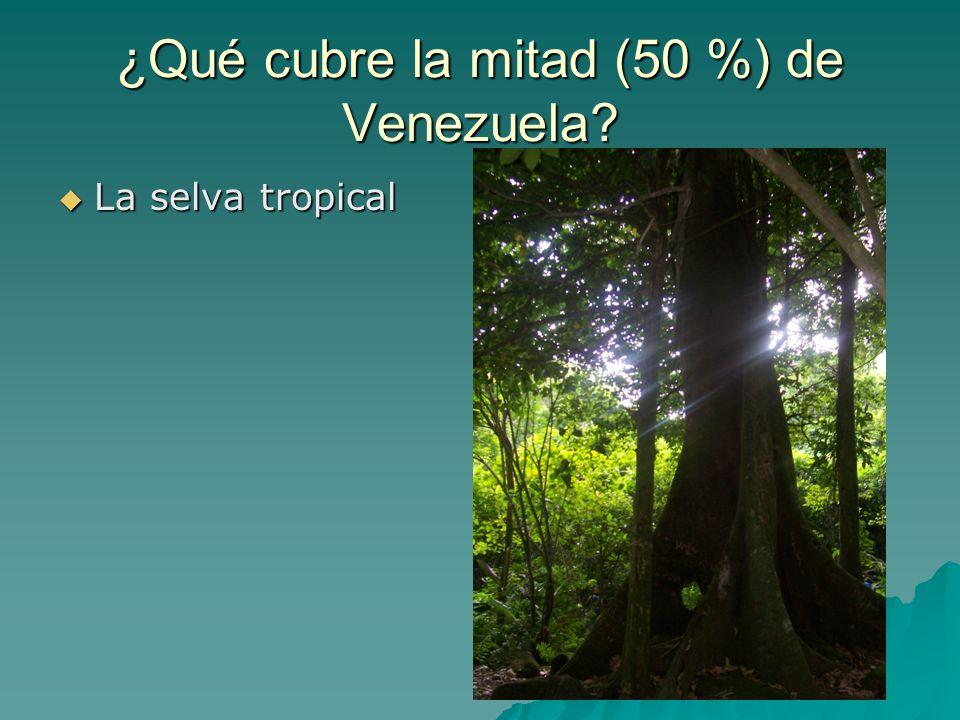 ¿Qué cubre la mitad (50 %) de Venezuela