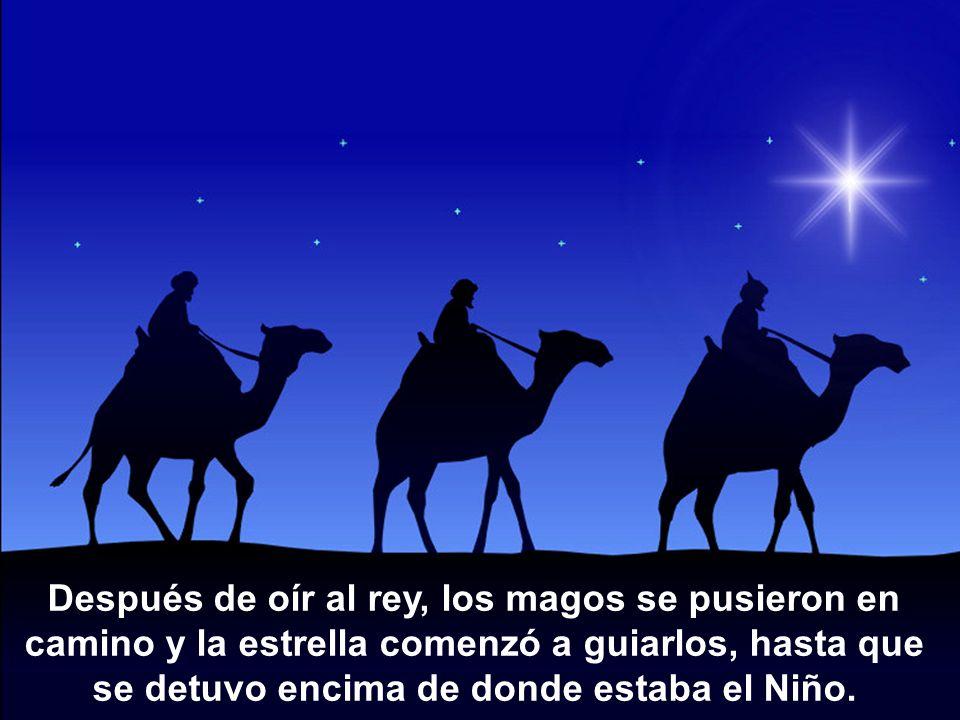 Después de oír al rey, los magos se pusieron en camino y la estrella comenzó a guiarlos, hasta que se detuvo encima de donde estaba el Niño.