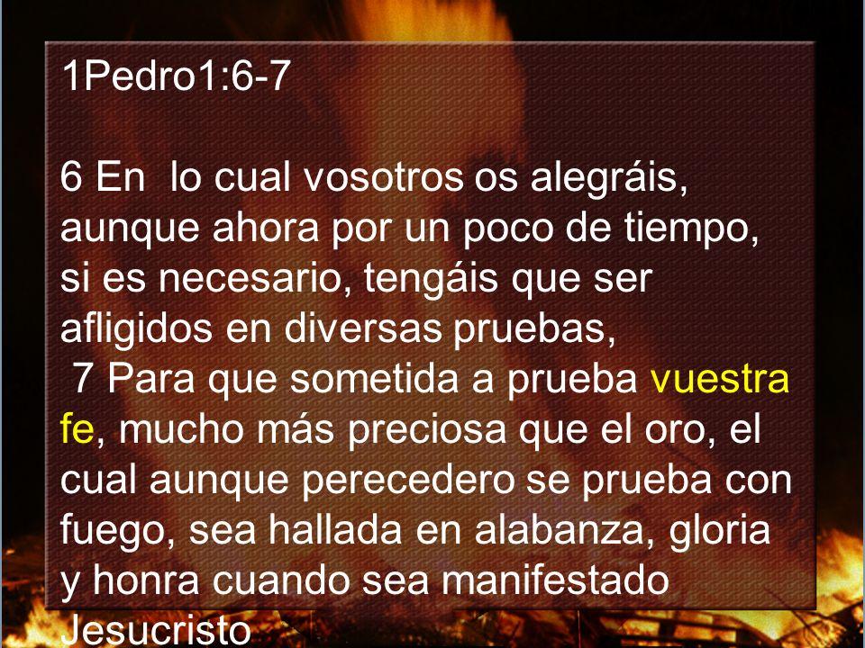 1Pedro1:6-7 6 En lo cual vosotros os alegráis, aunque ahora por un poco de tiempo, si es necesario, tengáis que ser afligidos en diversas pruebas,