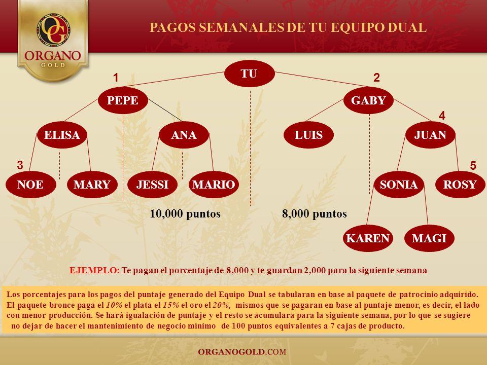 PAGOS SEMANALES DE TU EQUIPO DUAL