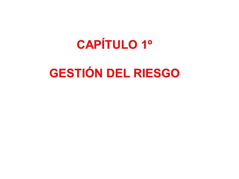 CAPÍTULO 1º GESTIÓN DEL RIESGO