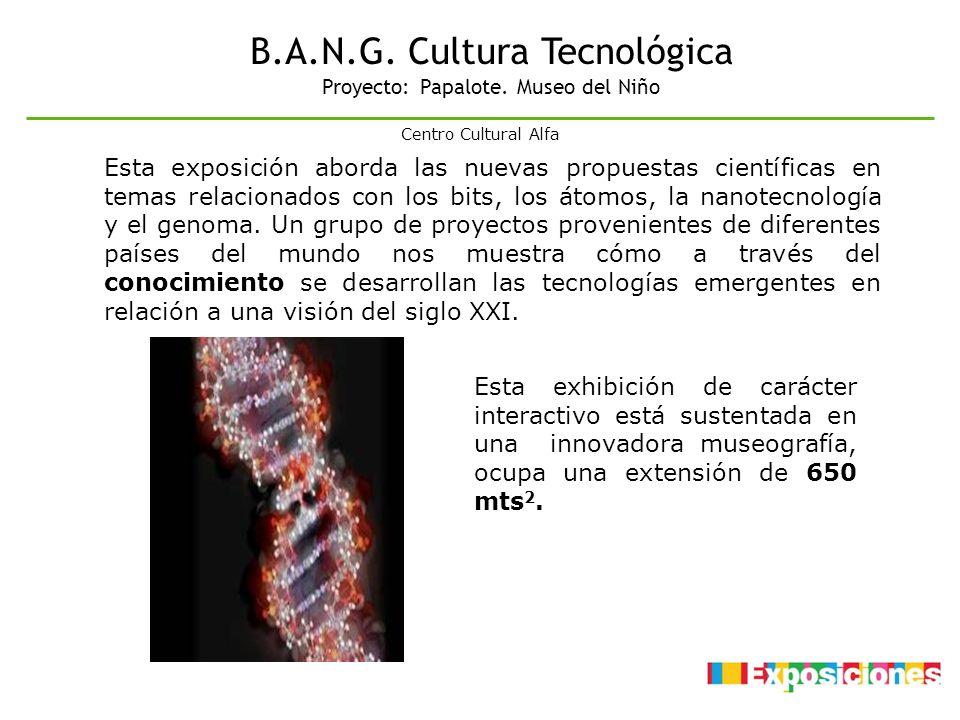 B.A.N.G. Cultura Tecnológica