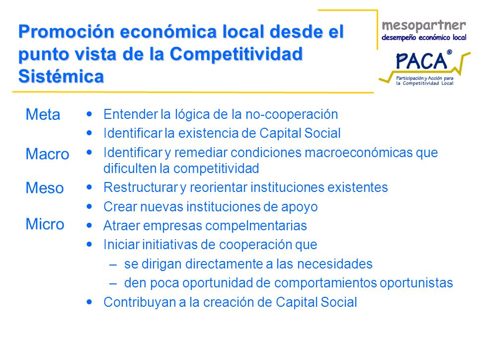 Promoción económica local desde el punto vista de la Competitividad Sistémica