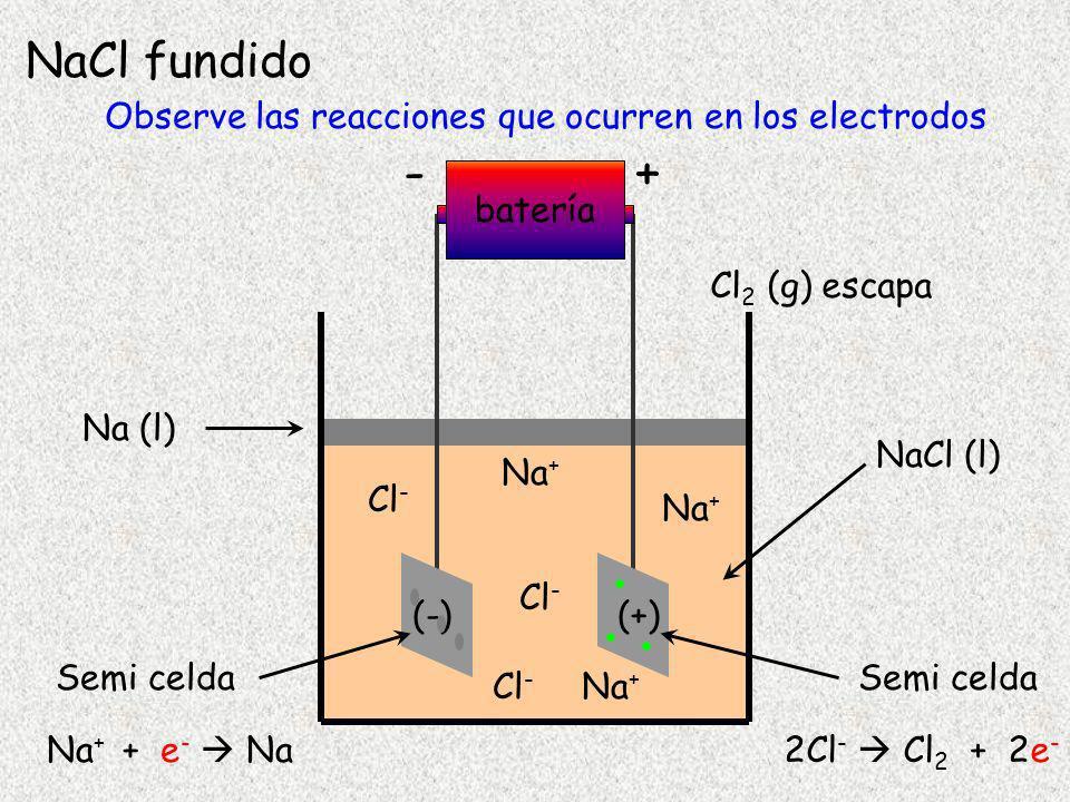 Observe las reacciones que ocurren en los electrodos