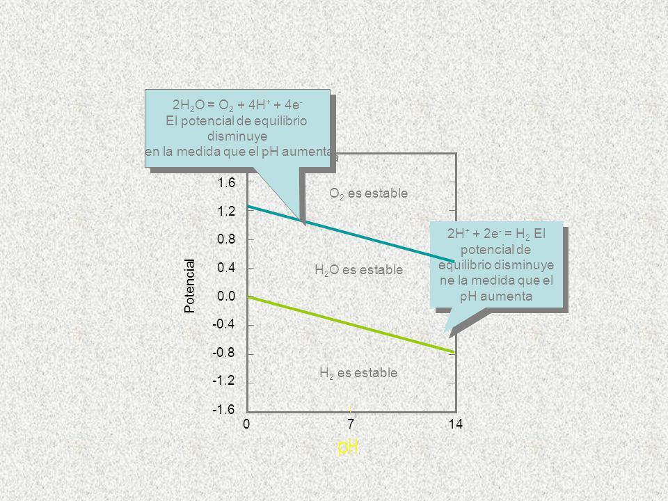 El potencial de equilibrio disminuye en la medida que el pH aumenta