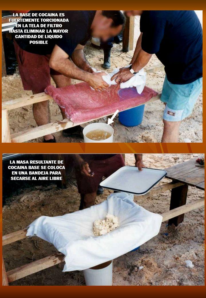 LA BASE DE COCAINA ES FUERTEMENTE TORCIONADA EN LA TELA DE FILTRO HASTA ELIMINAR LA MAYOR CANTIDAD DE LIQUIDO POSIBLE