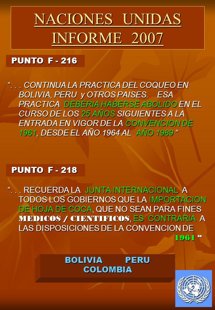 NACIONES UNIDAS INFORME 2007