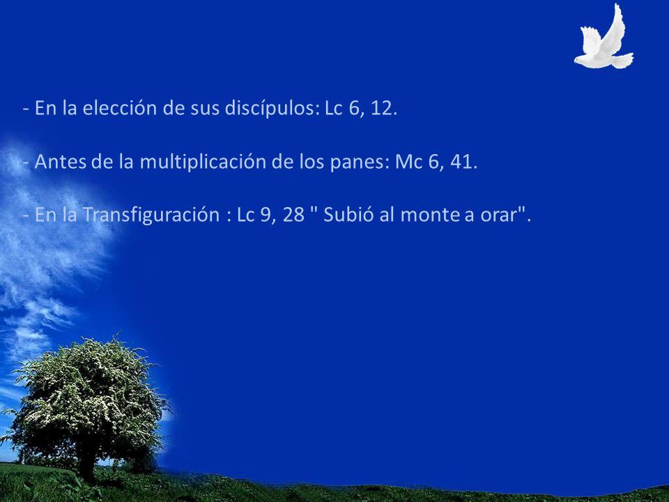 - En la elección de sus discípulos: Lc 6, 12