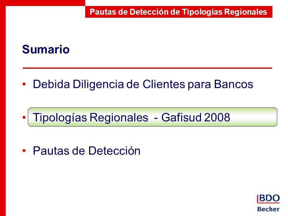 Pautas de Detección de Tipologías Regionales