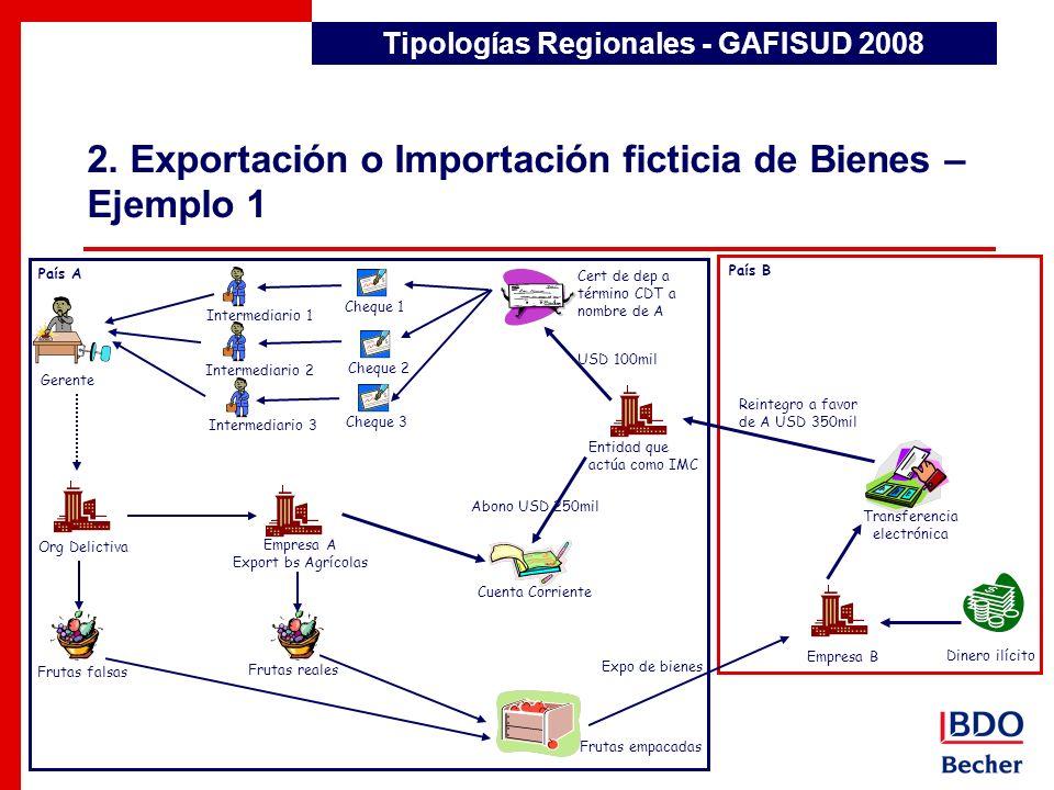2. Exportación o Importación ficticia de Bienes – Ejemplo 1