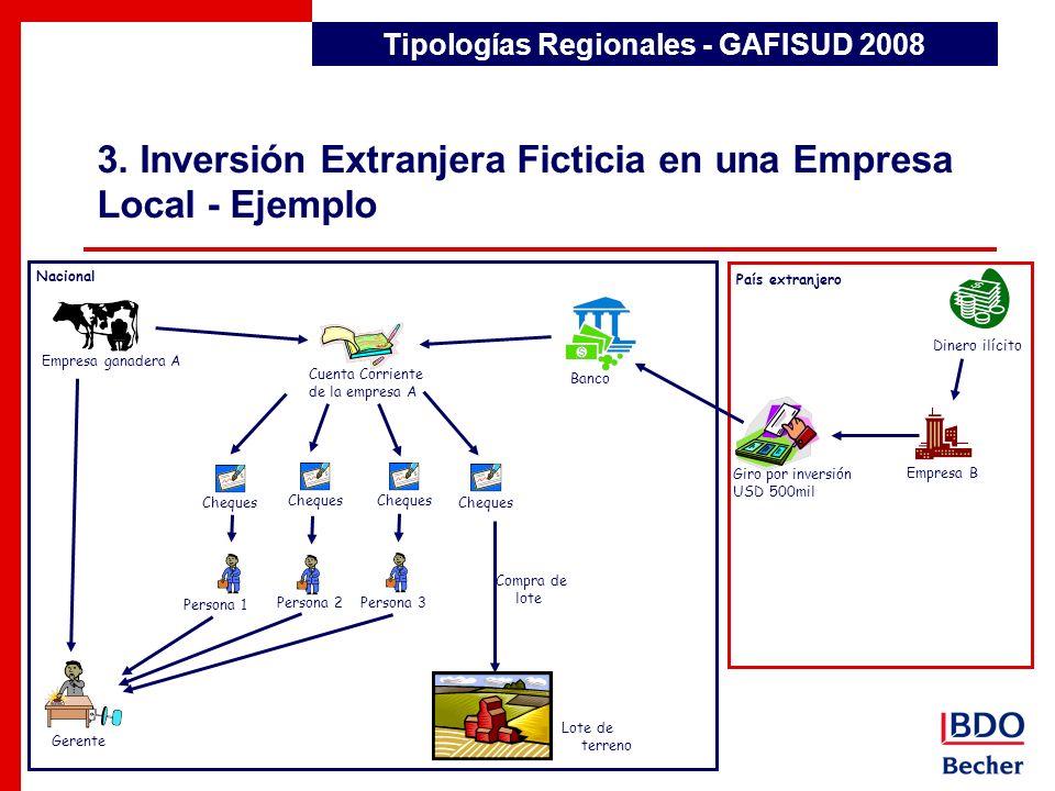 3. Inversión Extranjera Ficticia en una Empresa Local - Ejemplo