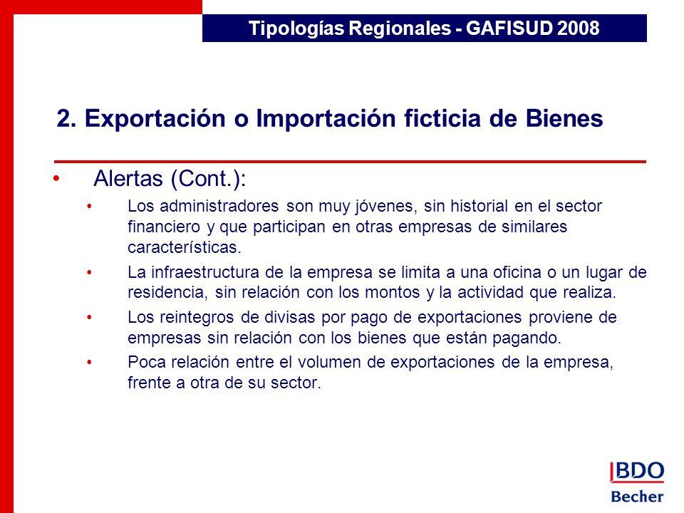 2. Exportación o Importación ficticia de Bienes