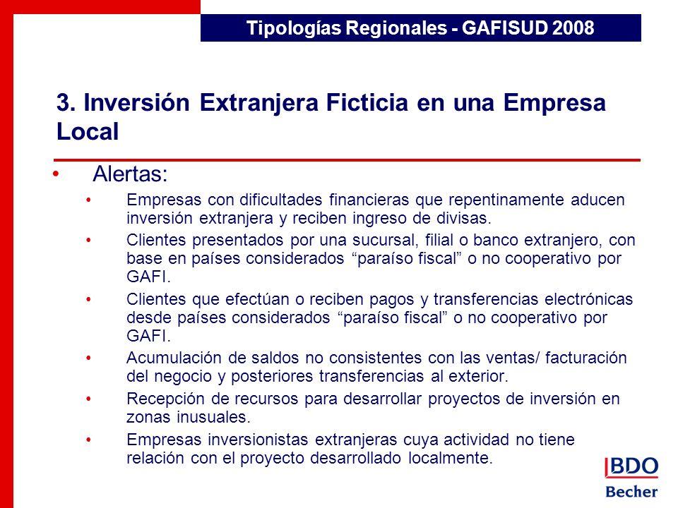 3. Inversión Extranjera Ficticia en una Empresa Local