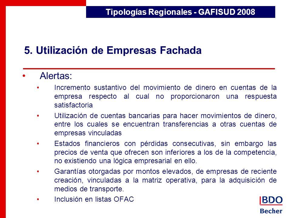 5. Utilización de Empresas Fachada