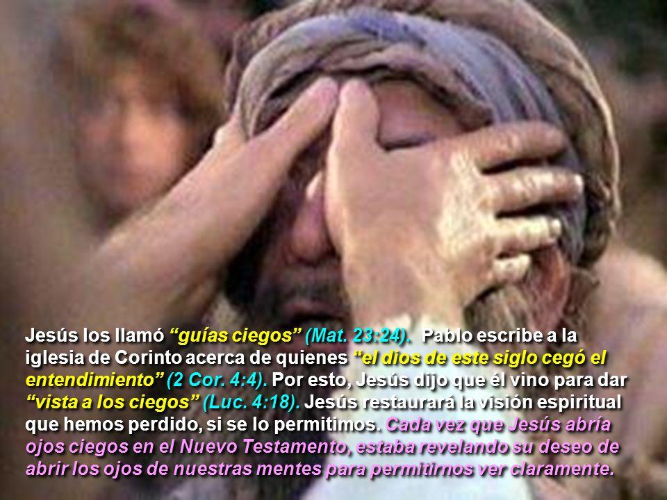 Jesús los llamó guías ciegos (Mat. 23:24)