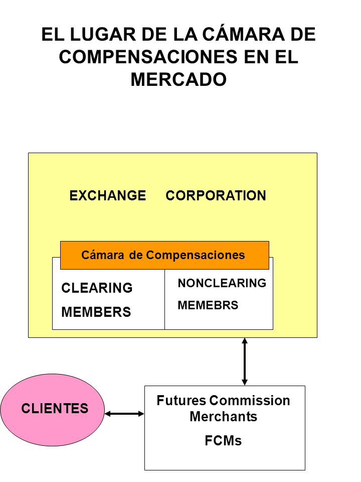 EL LUGAR DE LA CÁMARA DE COMPENSACIONES EN EL MERCADO
