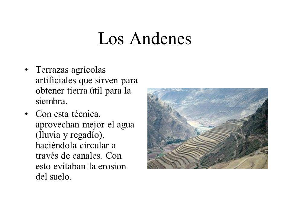 Los Andenes Terrazas agrícolas artificiales que sirven para obtener tierra útil para la siembra.