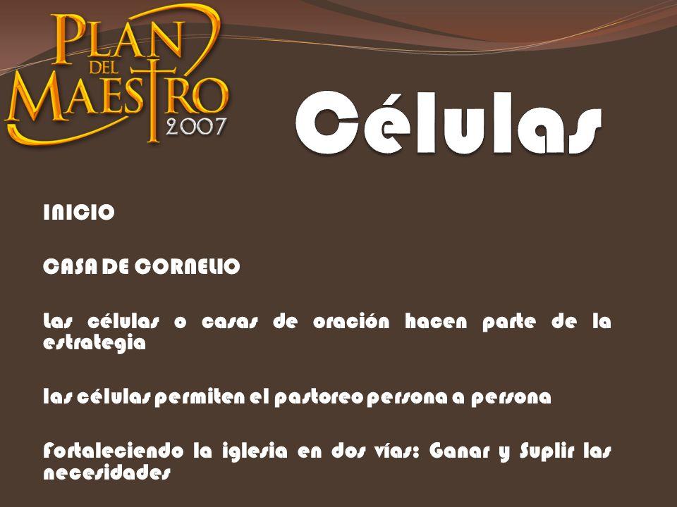 Células INICIO CASA DE CORNELIO
