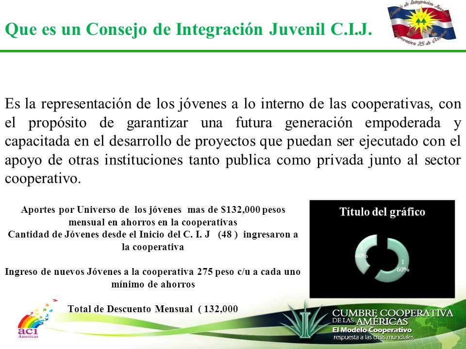 Que es un Consejo de Integración Juvenil C.I.J.
