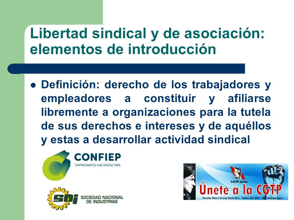 Libertad sindical y de asociación: elementos de introducción