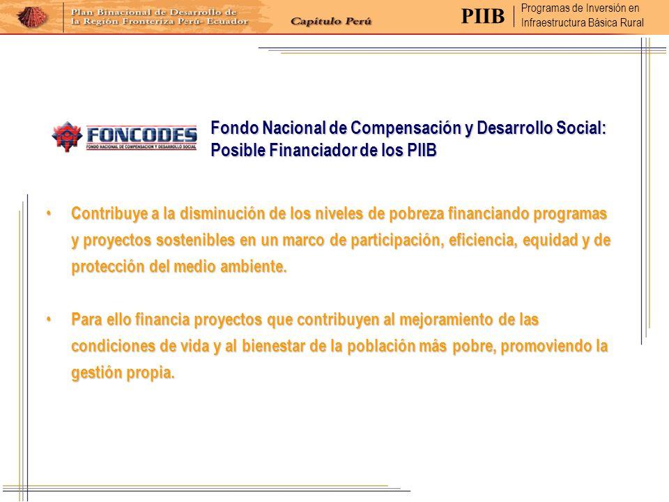 PIIB Programas de Inversión en. Infraestructura Básica Rural. Fondo Nacional de Compensación y Desarrollo Social: Posible Financiador de los PIIB.